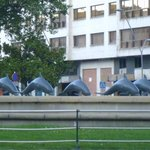 Burgos dolphins water feature in plaza Espana