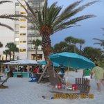 2014 Clearwater Hilton Beachfront