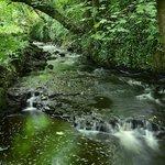 nearby:  mill creek