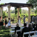 Vinyard wedding