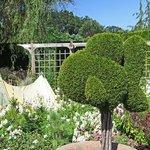 Topiary in children's garden