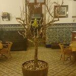 Foto de Casa Julia Hotel Restaurant