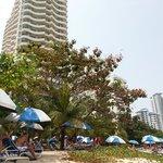 The resort sunbathing area
