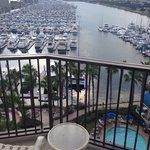 11th floor harbor view