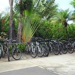 Parc de vélo