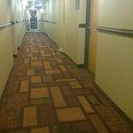Wall damage in hallway