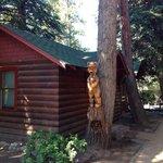 Cabin #4 Great Cabin!!!!