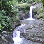 sweet waterfall