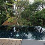 piscine privee