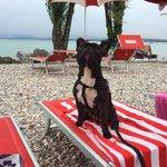 Foto di Bau Beach - la Spiaggia di Braccobaldo