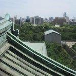 名古屋城30