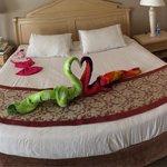 Huge bed!!