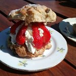 Best scones on Anglesey.