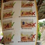 kaplan tapınağı uyarıları