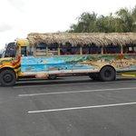 bus d'excursion