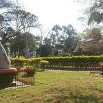 Muitas estátuas