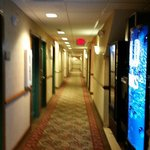 Foto de Country Inn & Suites By Carlson, Camp Springs (Andrews Air Force Base)