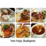 Ven Hajo food collage