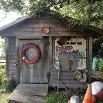 Zams shack