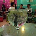 Gin and tonic at El Gato con Bota