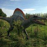 Spinosaure à Tropicaland
