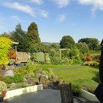 View of garden from patio of Garden Room Suite