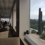 roof top bar restaurant. outside seating and pool too