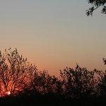 Zonsondergang in het veld