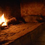 Trufa en la chimenea