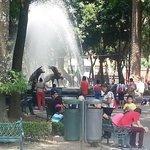 Jardín Centenario