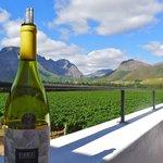 La Bri wine tasting area and vineyards