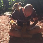 Surrounded by squirrel  monkeys during the Rainforest Tour��