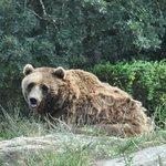 Parque Zoológico Marcelle Natureza (Parque Zoolóxico Marcelle Natureza)