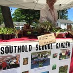 The Southhold School Garden is a favorite with local school kids to sell you their latest crops