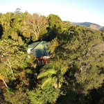 Aerial shot of a Lillypilly cottage