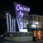 Orchid Key Sign on Duval at Night
