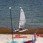 Seaweed mounts at the shore