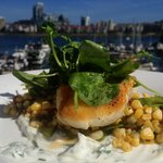 Halibut lunch feature