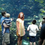 на фото цвет рыбок совсем не тот, что в реале (намного-намного красочнее)