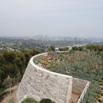 The cactus garden and L.A.