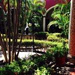 Jardín Hacienda