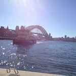 Great way to see Sydney