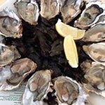 12 très bonnes huîtres