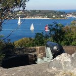 Walking Trail To Chowder Bay