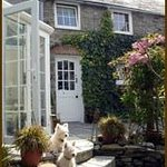 Mimi & Roly Outside The Garden Room
