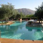 the pool in the morning sun