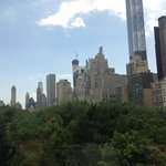The view on Central Park