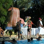 Entertainment at the pool in the day - a camel!