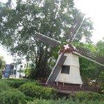 disampingnya juga ada kincir angin khas belanda yang menambah cantik :)