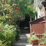 Napier Lane Foto